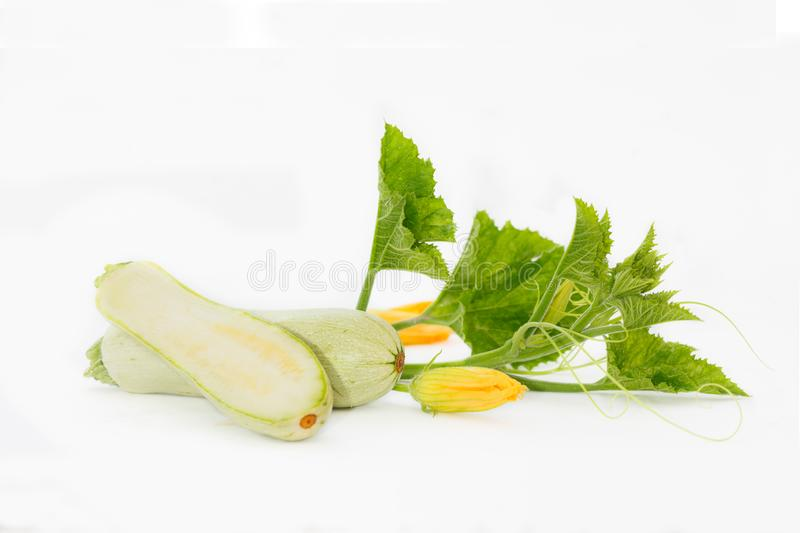 Fresh zucchini with leaves and flowers on white table royalty free stock images