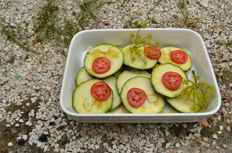 Fresh zucchini and tomaetoes. Uncooked zucchini and tomatoes in withe backing dish stock photos