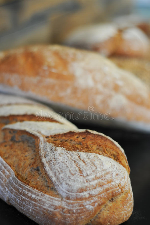 Freshly baked royalty free stock photos