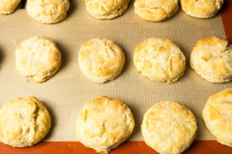 Freshly baked biscuits or scones