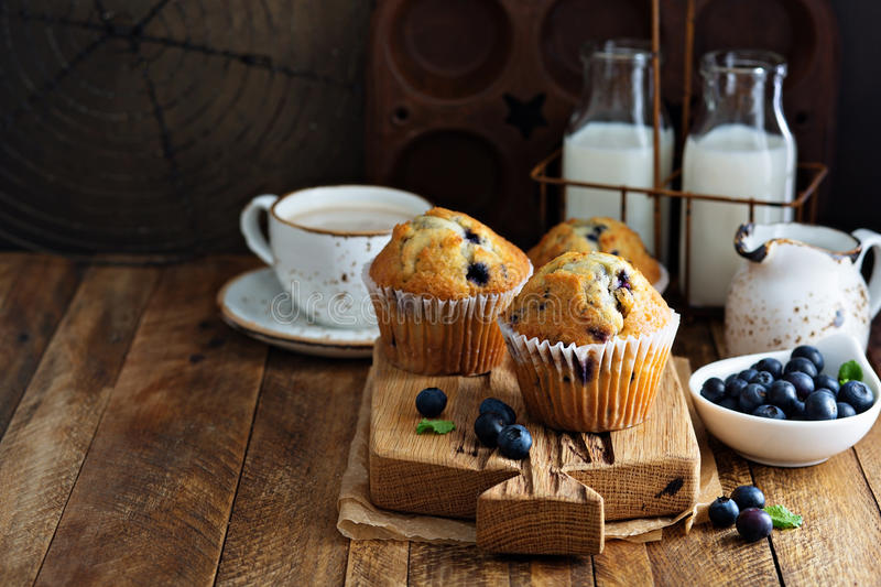 Freshly baked blueberry muffins in a rustic setting royalty free stock photo