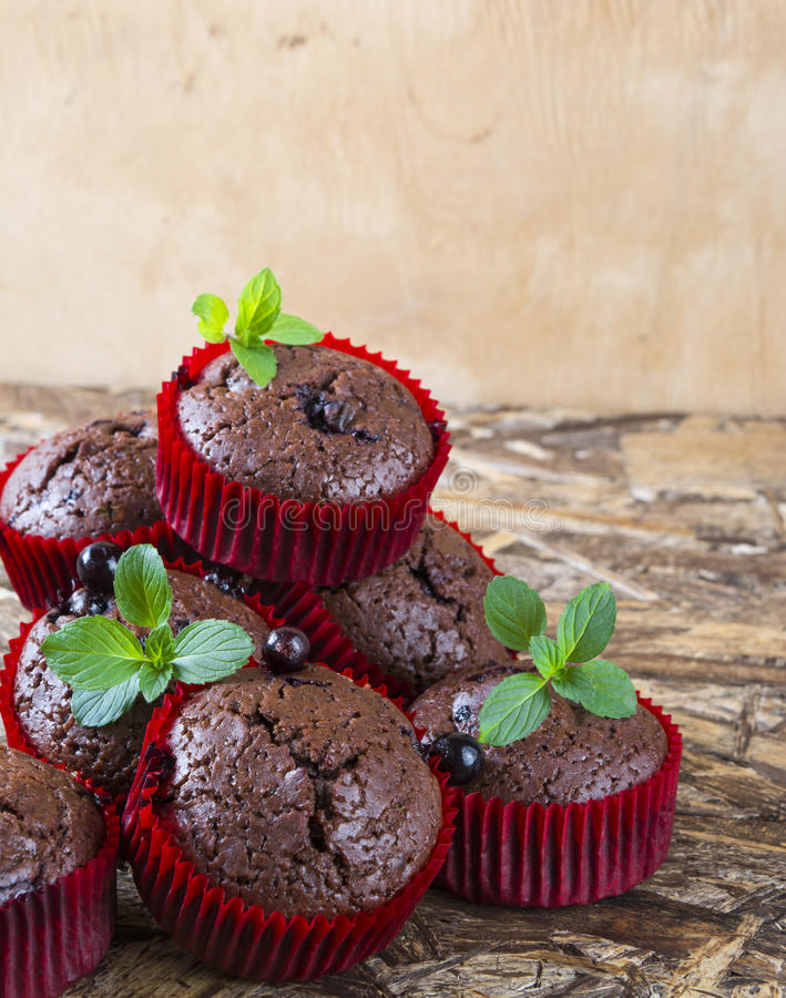 Freshly baked chocolate muffins with currant and mint in red forms stock photos