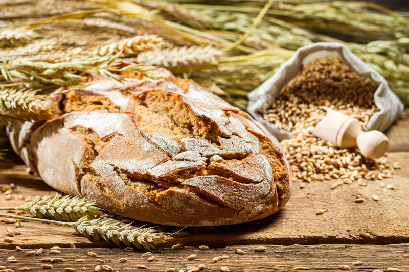 Freshly baked country bread stock image