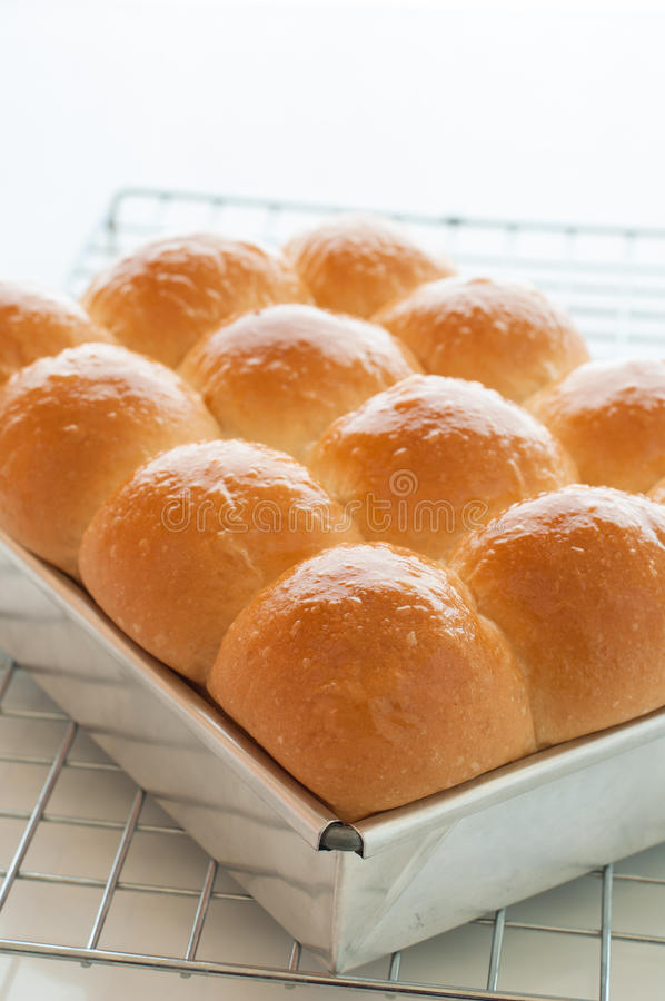 Freshly baked golden bun. royalty free stock photography