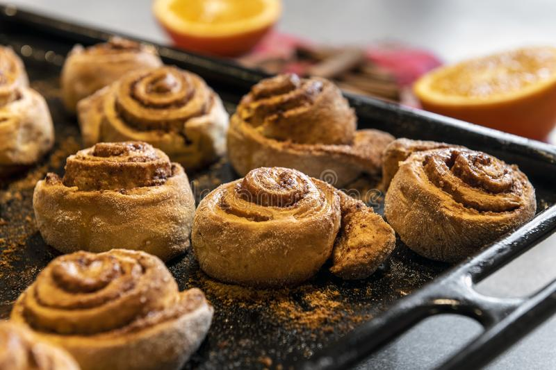 Freshly baked homemade cinnamon rolls buns. With cocoa and spices on a metal a baking sheet. Christmas pastries. Close-up royalty free stock photo