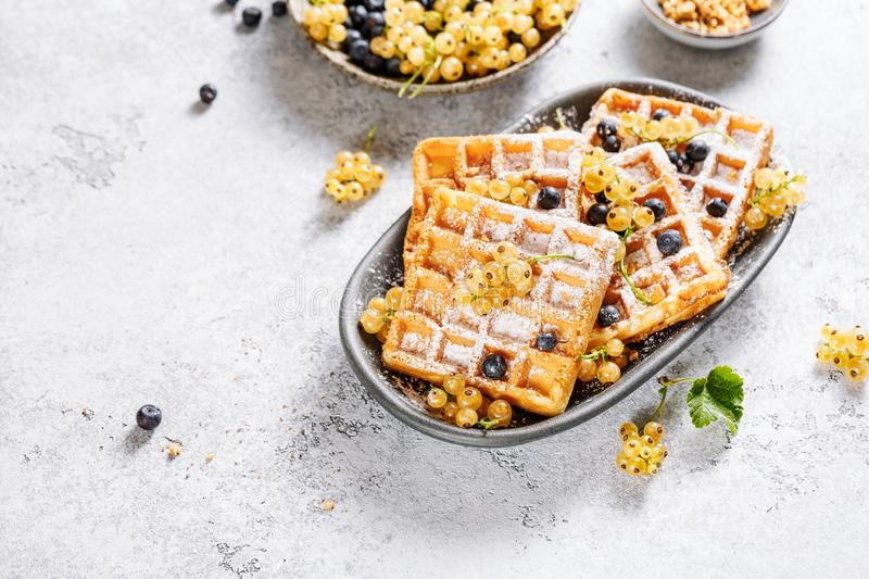 Freshly baked homemade waffles with berries. royalty free stock photo