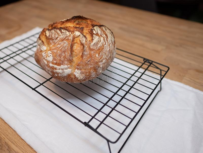 Freshly baked loaf of bread rests on wire cooling rack stock photography