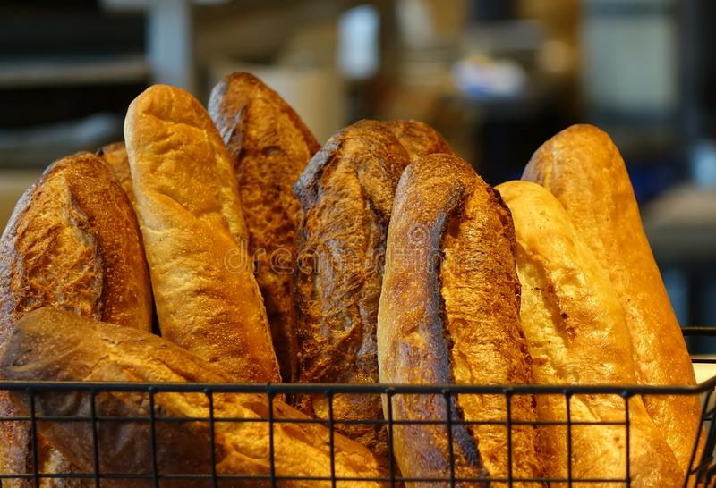 Freshly Baked Loaves of French Bread royalty free stock photography