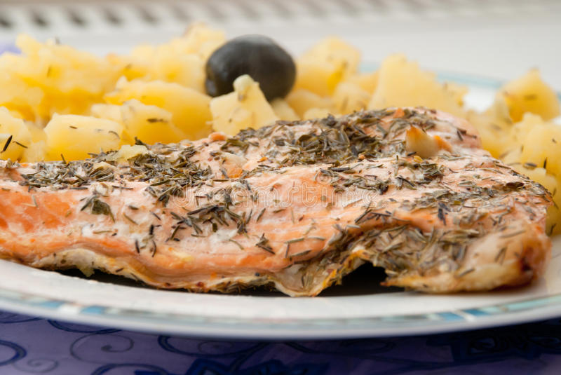 Freshly baked salmon with potatoes. Plate with freshly baked salmon fish and potatoes, cooked with olive oil, lemon juice, rosemary, thyme, salt, pepper and royalty free stock photo