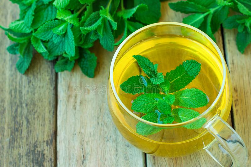Freshly Brewd Herbal Mint Tea in Glass Cup Green Herbs on Plank Wood Garden Table Holistic Medicine Healthy Drink Detox Ayurveda. Copy Space royalty free stock images