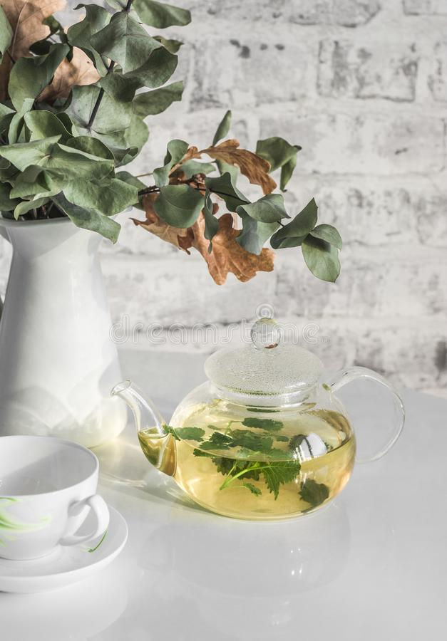 Freshly brewed green mint tea in a glass teapot on a white table royalty free stock images