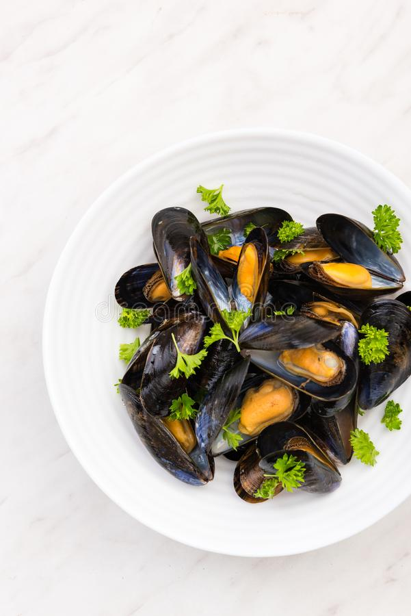 Freshly Catch Mussels Served on Plate,Seafood Restaurant Dish stock image