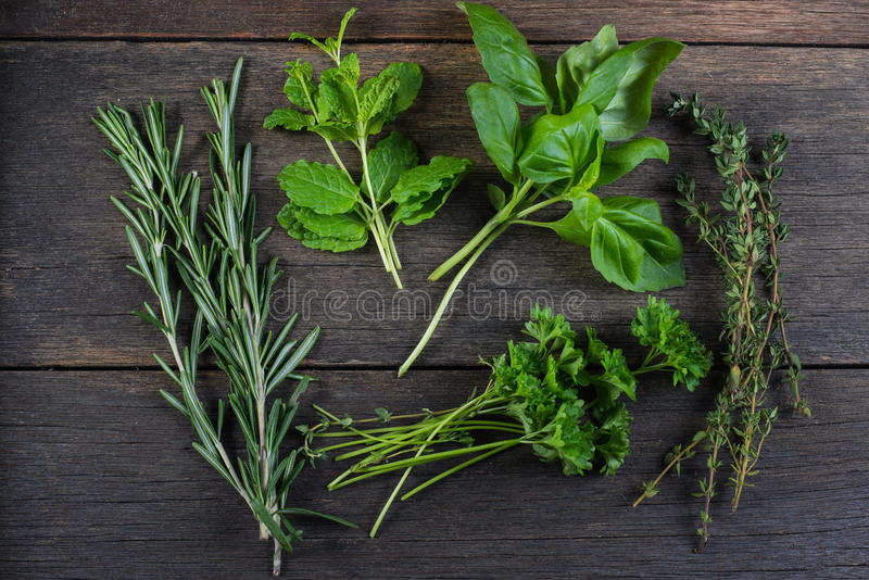 Freshly cliped herbs on wooden background stock images