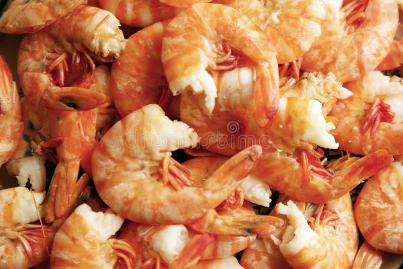 Freshly cooked peeled prawns royalty free stock photo