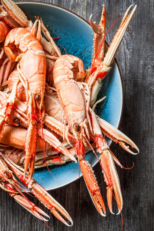 Freshly cooked scampi in a blue bowl stock photography