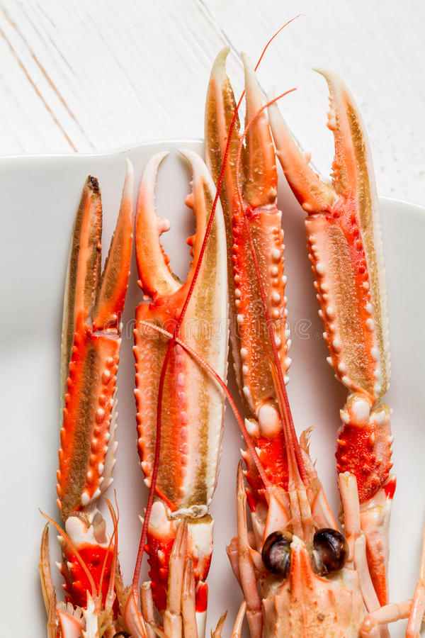 Freshly cooked scampi on a plate royalty free stock photo
