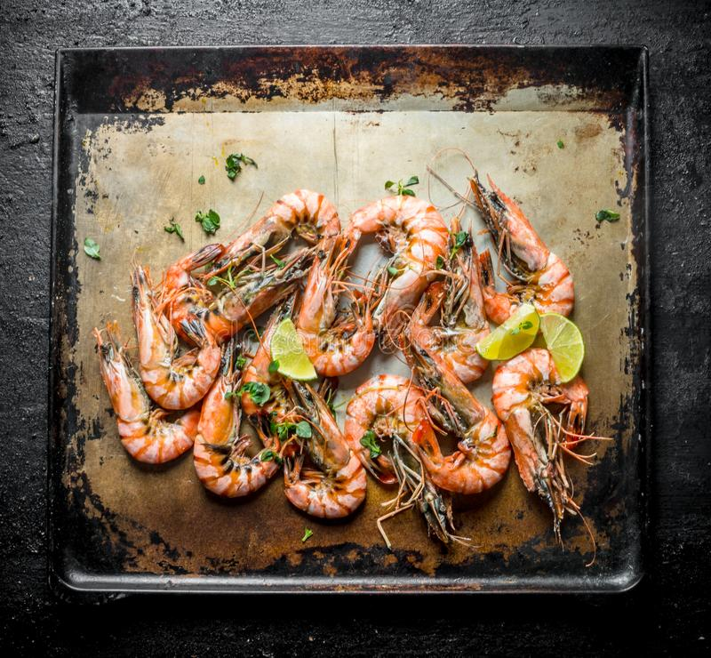 Freshly cooked shrimps. On rustic background stock photos