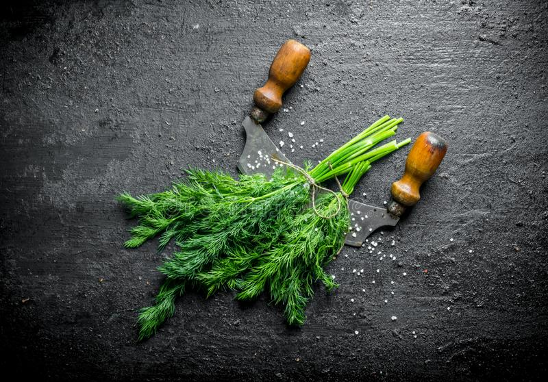 Freshly cut dill with a knife. On black rustic background royalty free stock photography