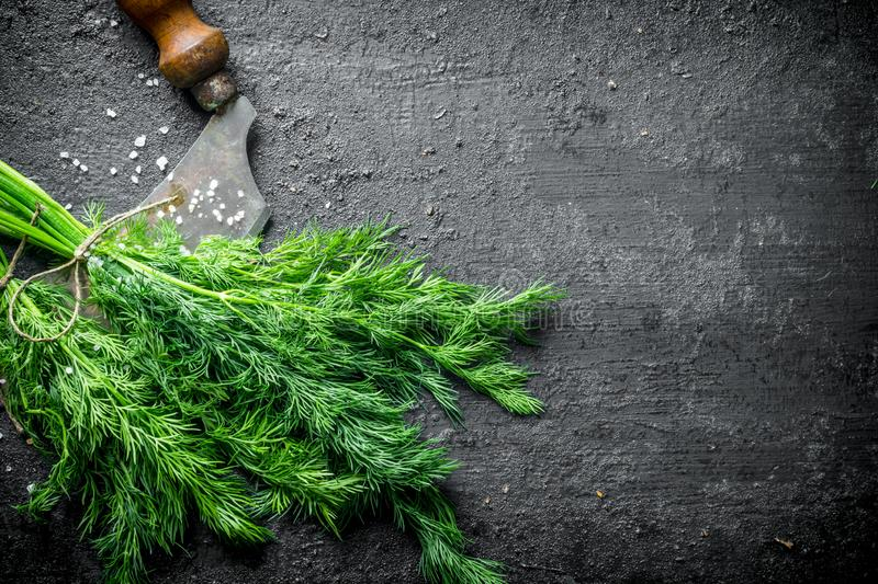 Freshly cut dill with a knife. On black rustic background stock photography