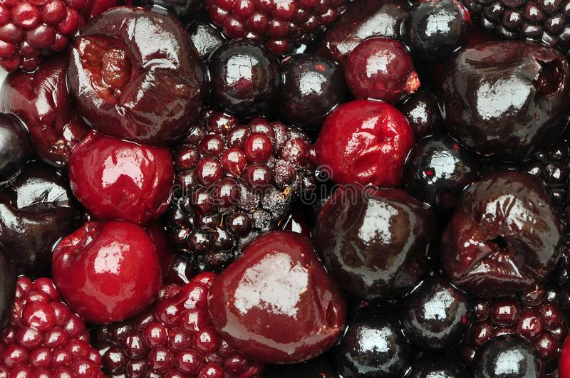 Freshly foraged fruits of the forest royalty free stock images