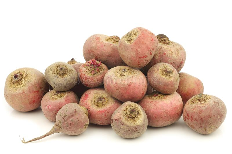 Freshly harvested bunch of red chioggia beets royalty free stock photography