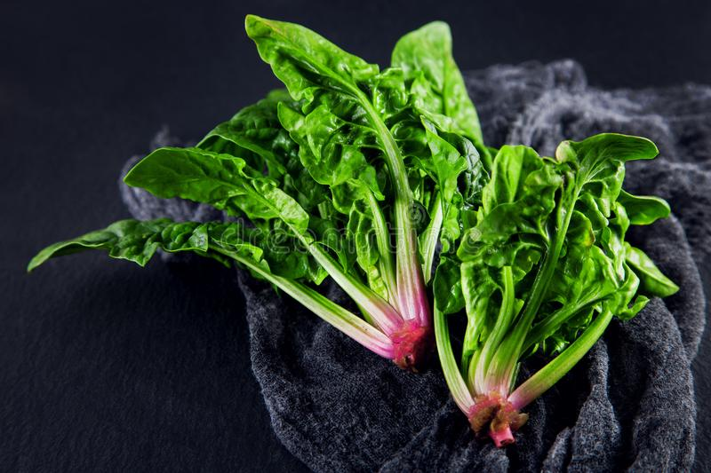 Freshly harvested spinach on dark kitchen plate and napkin stock images