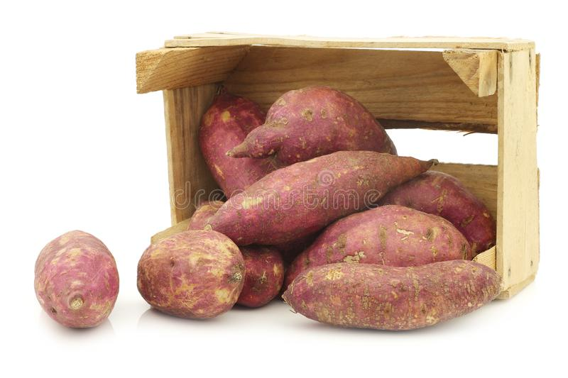 Freshly harvested sweet potatoes in a wooden crate royalty free stock photography