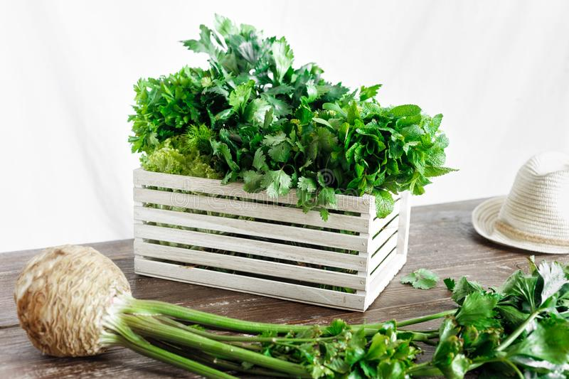 Freshly herbs wooden box wooden table Harvesting. Freshly herbs in wooden box on wooden table. Harvesting concept stock images