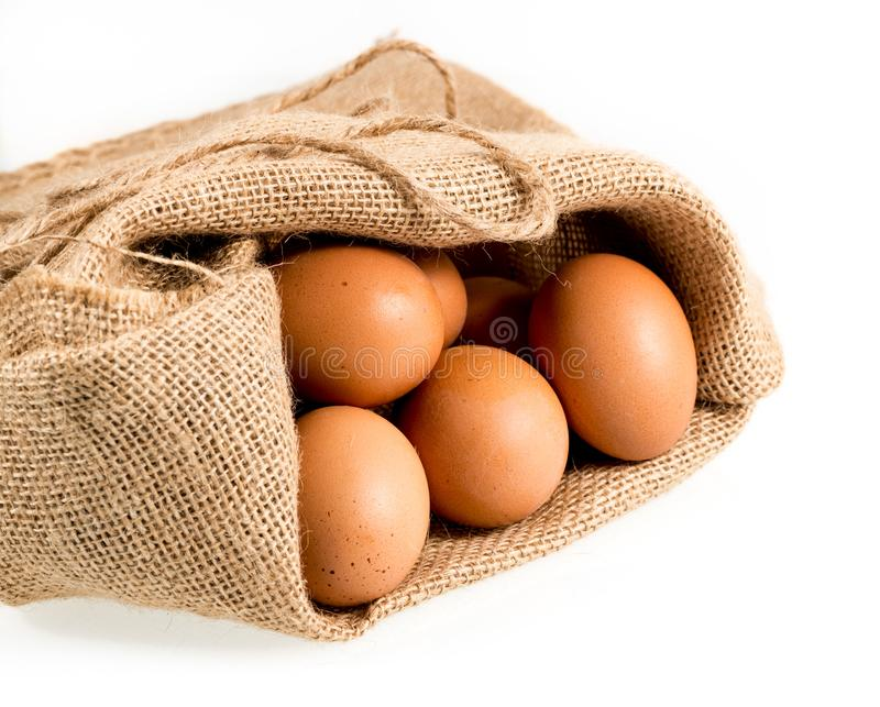 Freshly laid organic eggs in burlap sack isolated. Easter background with brown organic eggs arranged in burlap sack and isolated against white background royalty free stock images