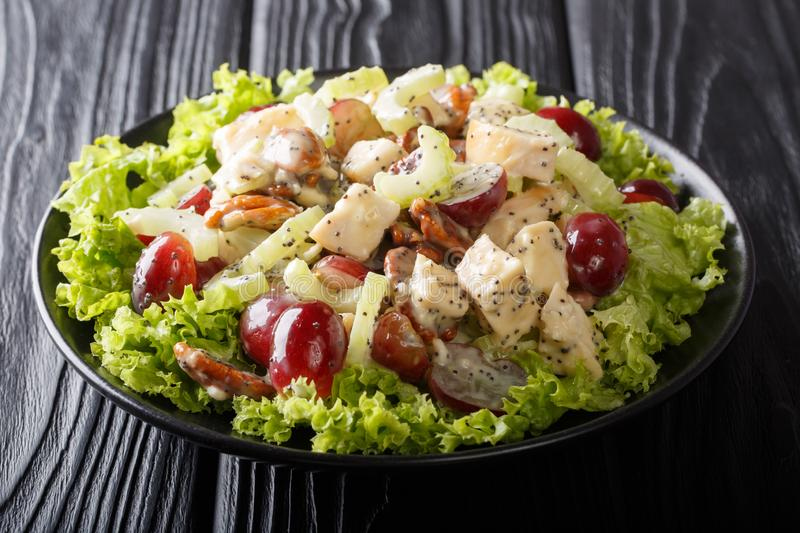 Freshly made Sonoma salad with chicken breast, celery, pecans and grapes close-up on a plate. horizontal. Freshly made Sonoma salad with chicken breast, celery stock images