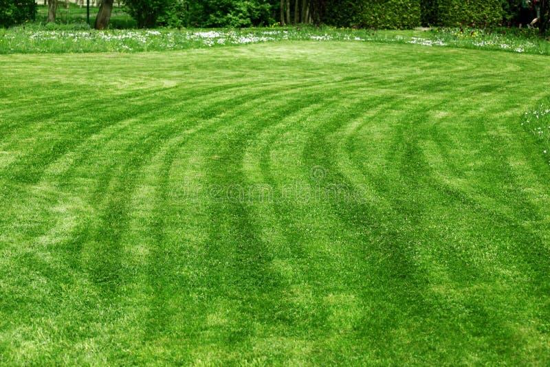 Freshly mowed lawn stock photo