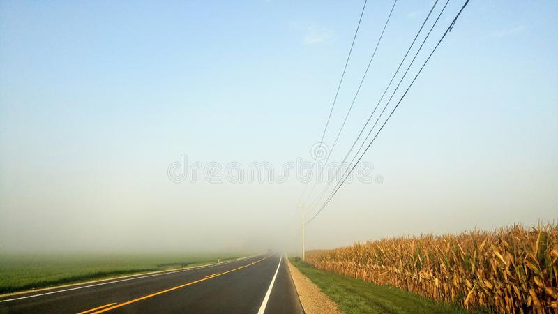Country Road with Corn and Electric Wires in Fog stock images