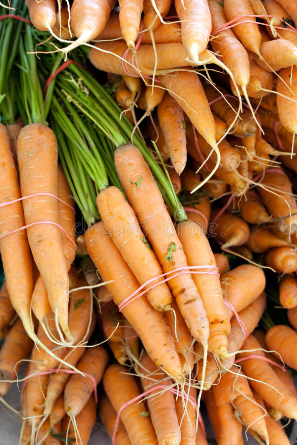 Freshly Picked Bunches Of Organic Carrots Royalty Free Stock Photos