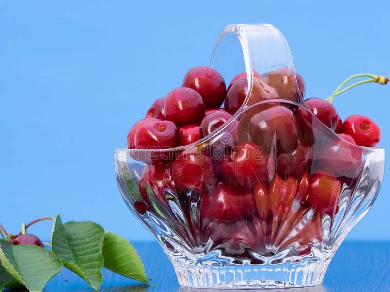 Freshly picked cherries in a crystal basket. With blue background and a branch of cherry tree with leaves and cherries still on royalty free stock images
