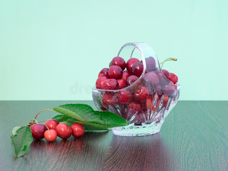 Freshly picked cherries in a crystal basket. With green background and a branch of cherry tree with leaves and cherries still on royalty free stock photos
