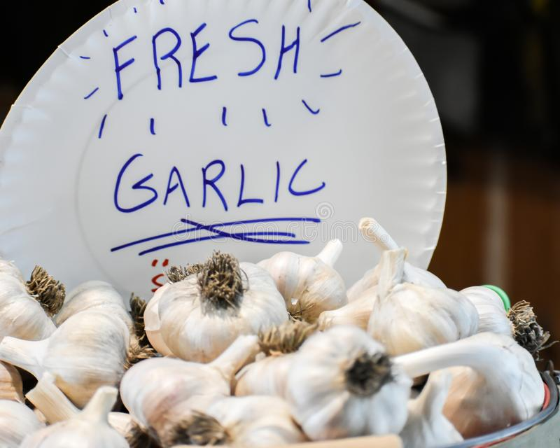 Fresh Garlic with Paper Plate Sign. Freshly picked garlic with a paper plate sign written in blue marker stock photos
