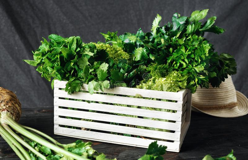 Freshly picked herbs wooden box harvesting concept. Freshly picked herbs in wooden box harvesting concept stock image