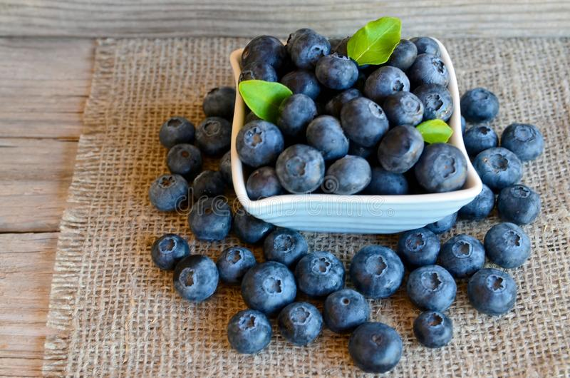 Freshly picked organic blueberries in a white bowl on a burlap cloth background. Blueberry.Bilberries. Healthy eating,vegan food or diet concept with copy space royalty free stock photos