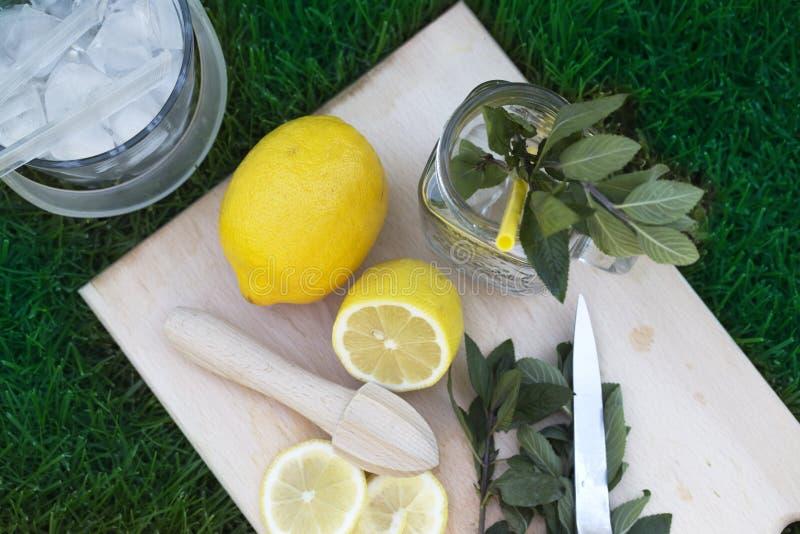 freshly picked organic lemons and mint leaves for making cocktail or lemonade stock photography