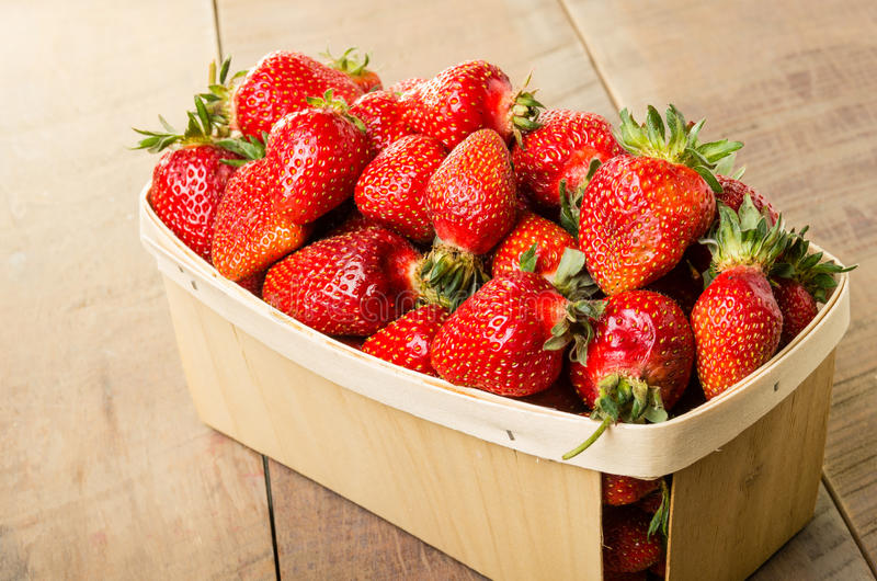 Freshly picked strawberries in a basket stock photos