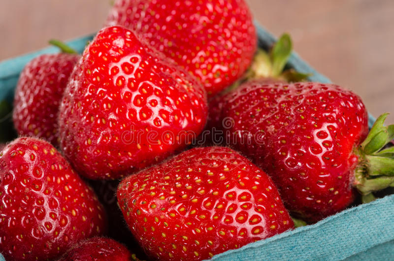 Freshly picked strawberries in a basket royalty free stock image