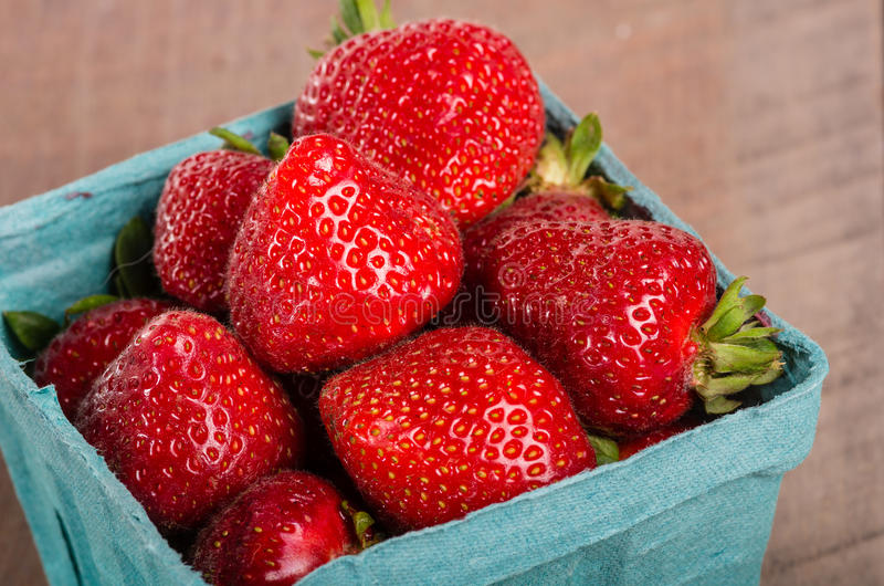 Freshly picked strawberries in a basket stock image