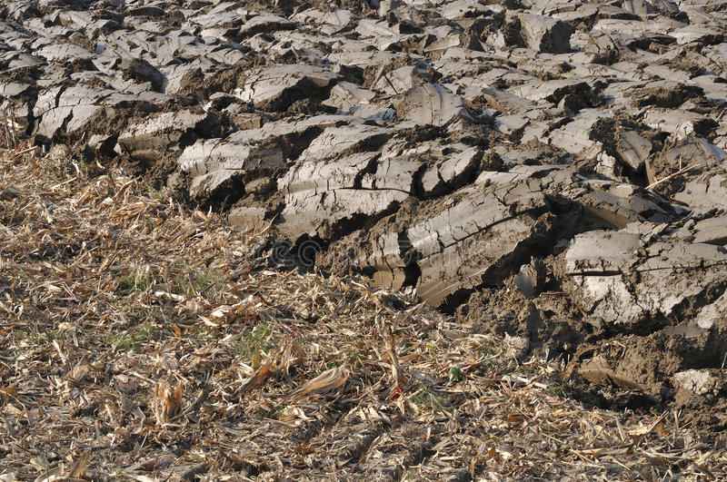 Freshly ploughed field. Sunny grey clods in recently ploughed field near po river, parma countrtyside, emilia royalty free stock images