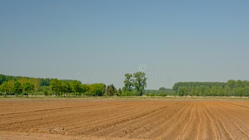 Spring farmland in the Flemish countryside, ready for sewing stock photos