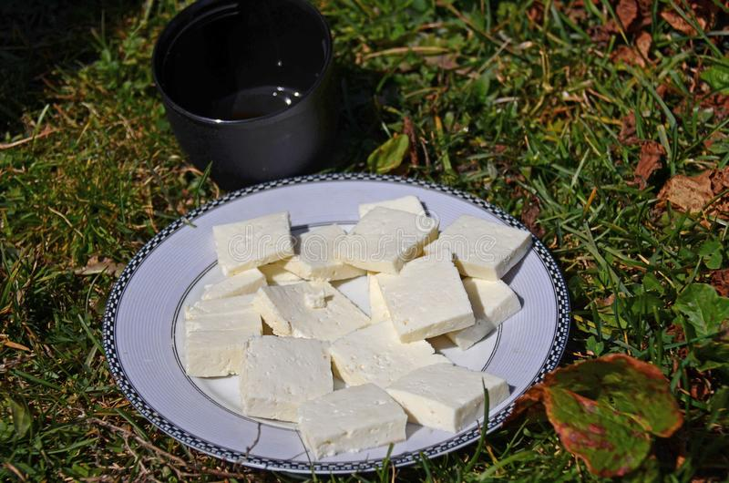 Freshly prepared goat's cheese is hand-made on a round white plate next to a black cup of tea standing on the grass royalty free stock images