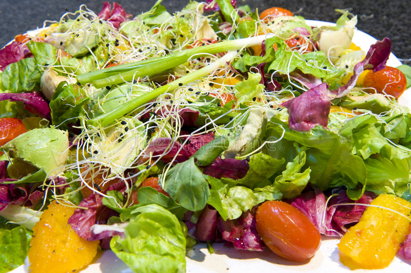 Freshly prepared salads stock images