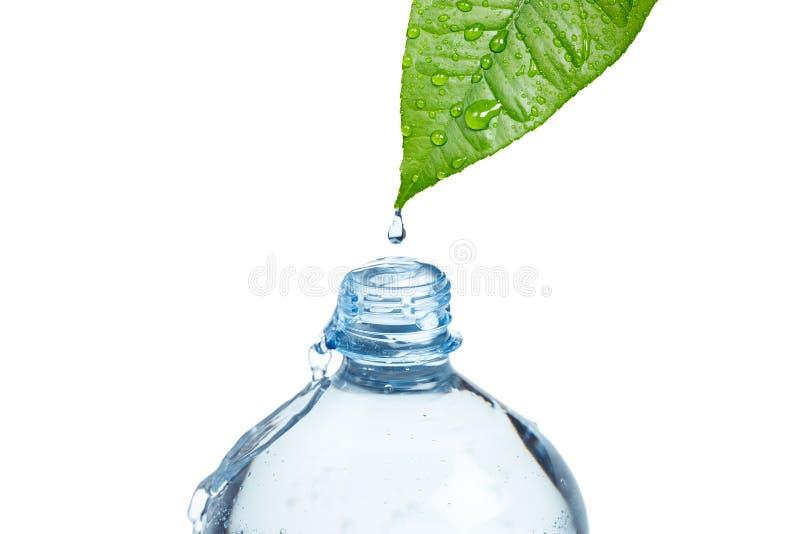 Freshnes naturali del concetto dell'acqua fotografia stock libera da diritti