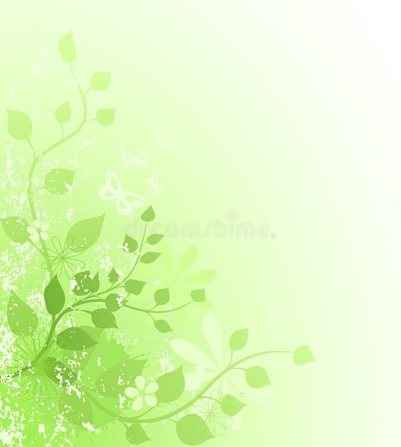 Download Freshness stock illustration. Illustration of flower - 14253041