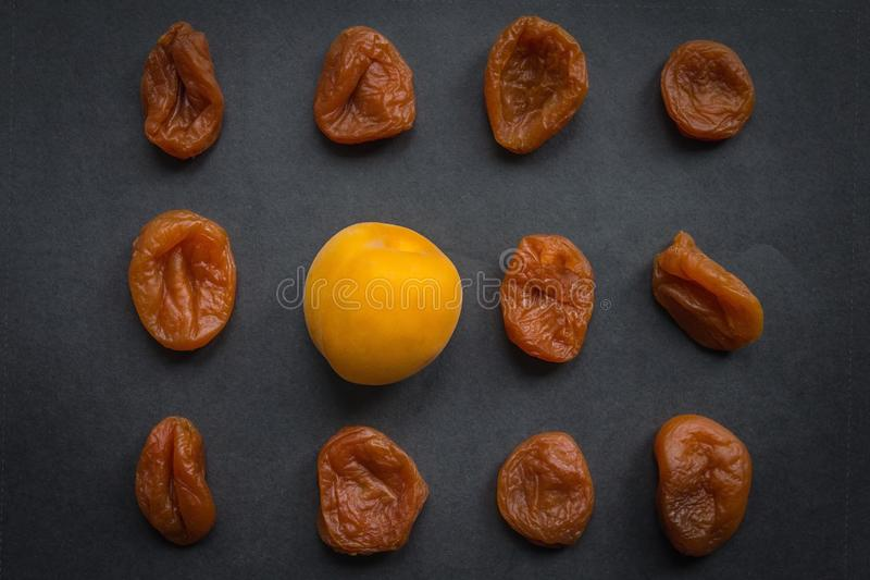 Freshness, best quality. Among the dried apricots one fresh, juicy, bright. A fresh solution, a new approach, the best quality. Dark background, top view royalty free stock image