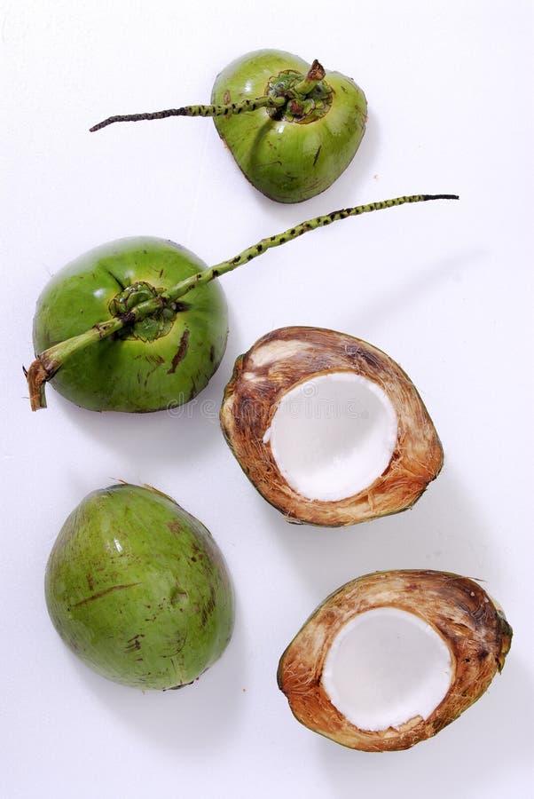 Freshness Coconut Royalty Free Stock Photography